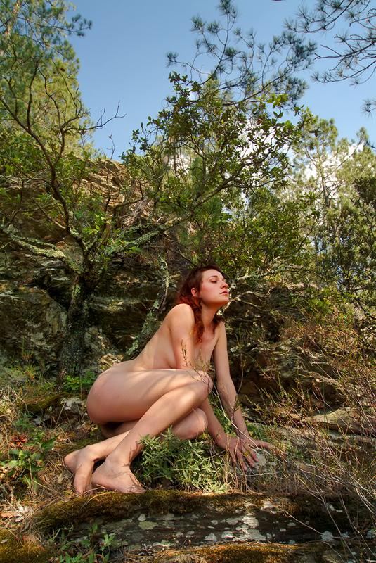 Book Photographe photo Jacques Coeman nus en couleurs 2