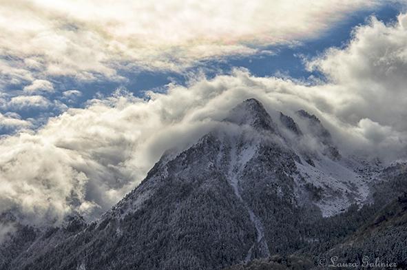 Book Photographe Azalé Photo Hautes Pyrénées : du détail au paysage