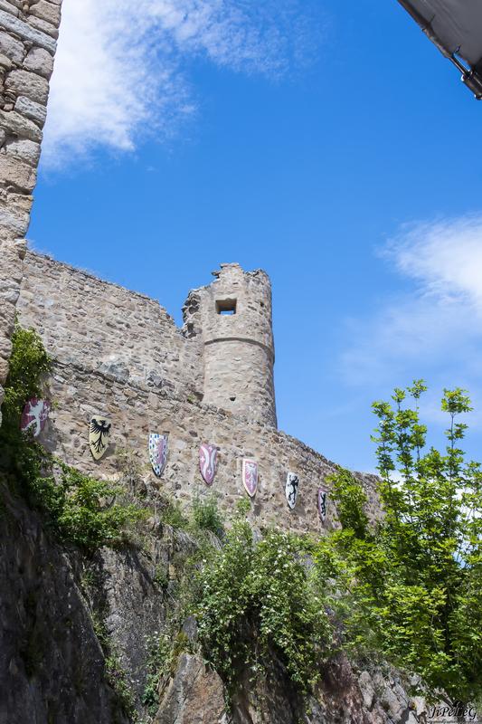 Book Photographe Photographie-By-JiPeLeg Chateau  de Hohlandsbourg Ht Rhin Alsace